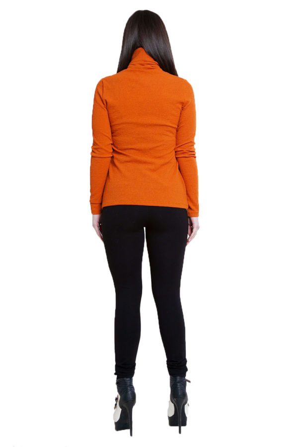 rust turtleneck top- back