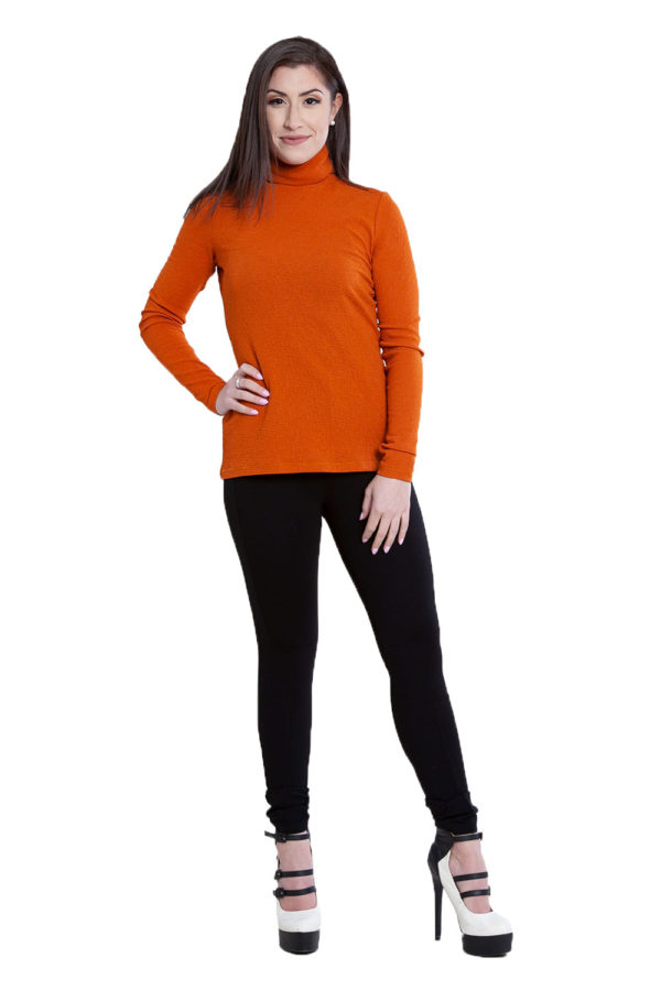 rust turtleneck top- front