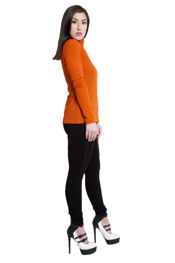 rust turtleneck top- side