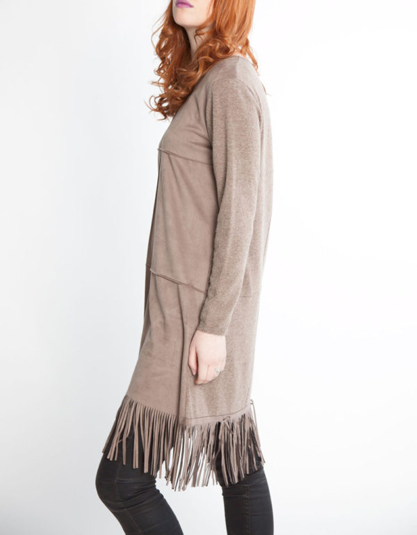 ultra suede fringed taupe tunic dress- side